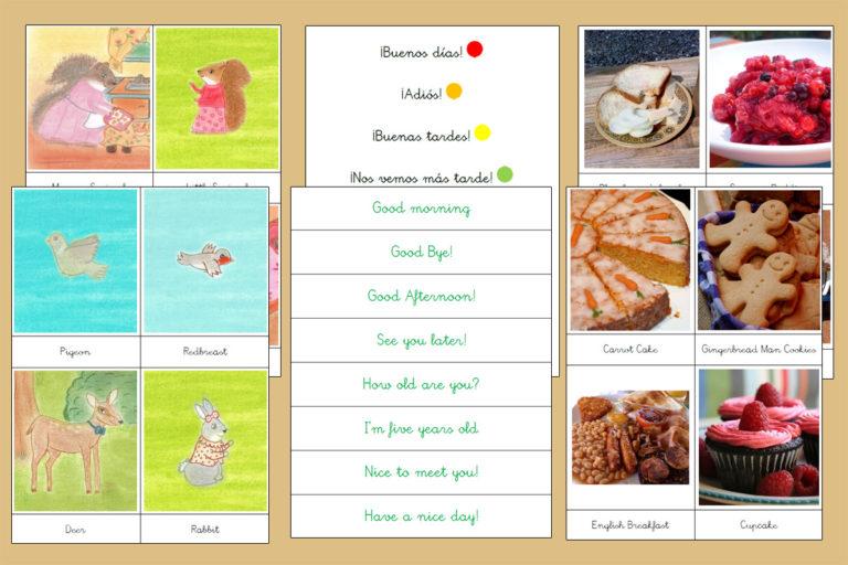 Tarjetas Montessori Vocabulario Inglés